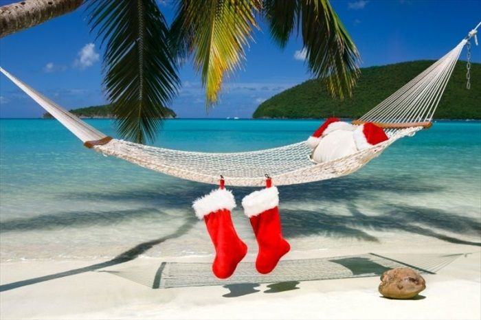 1408256092_christmas-on-the-beach-hammock-palm-trees-blue-sea1.jpg